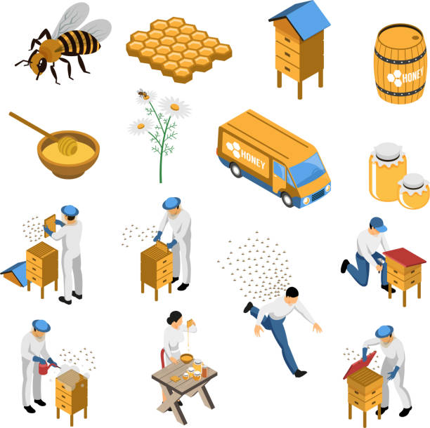 isometric beekeeper honey set Apiculture isometric set with flowers and bees beekeeper near hive honey in various containers isolated vector illustration swarm of insects stock illustrations