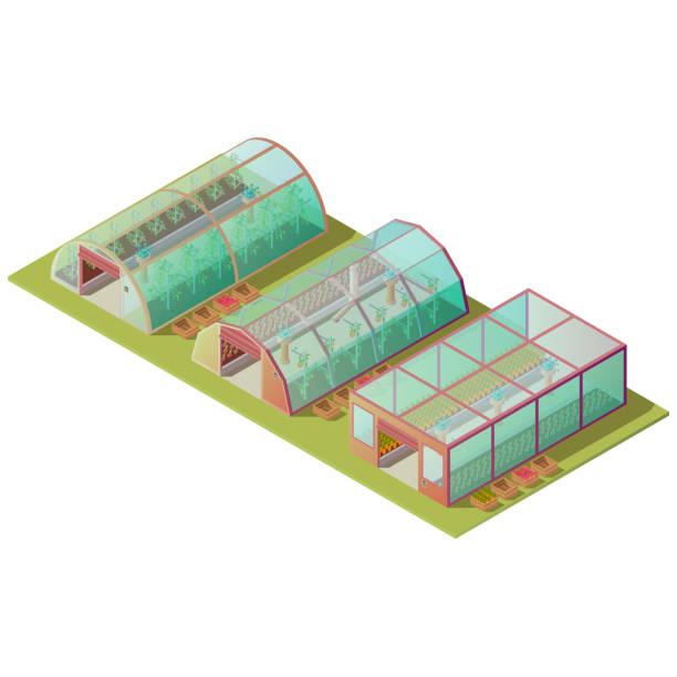 Isometrisches Gewächshaus, landwirtschaftliche Gebäude isoliert Symbol – Vektorgrafik