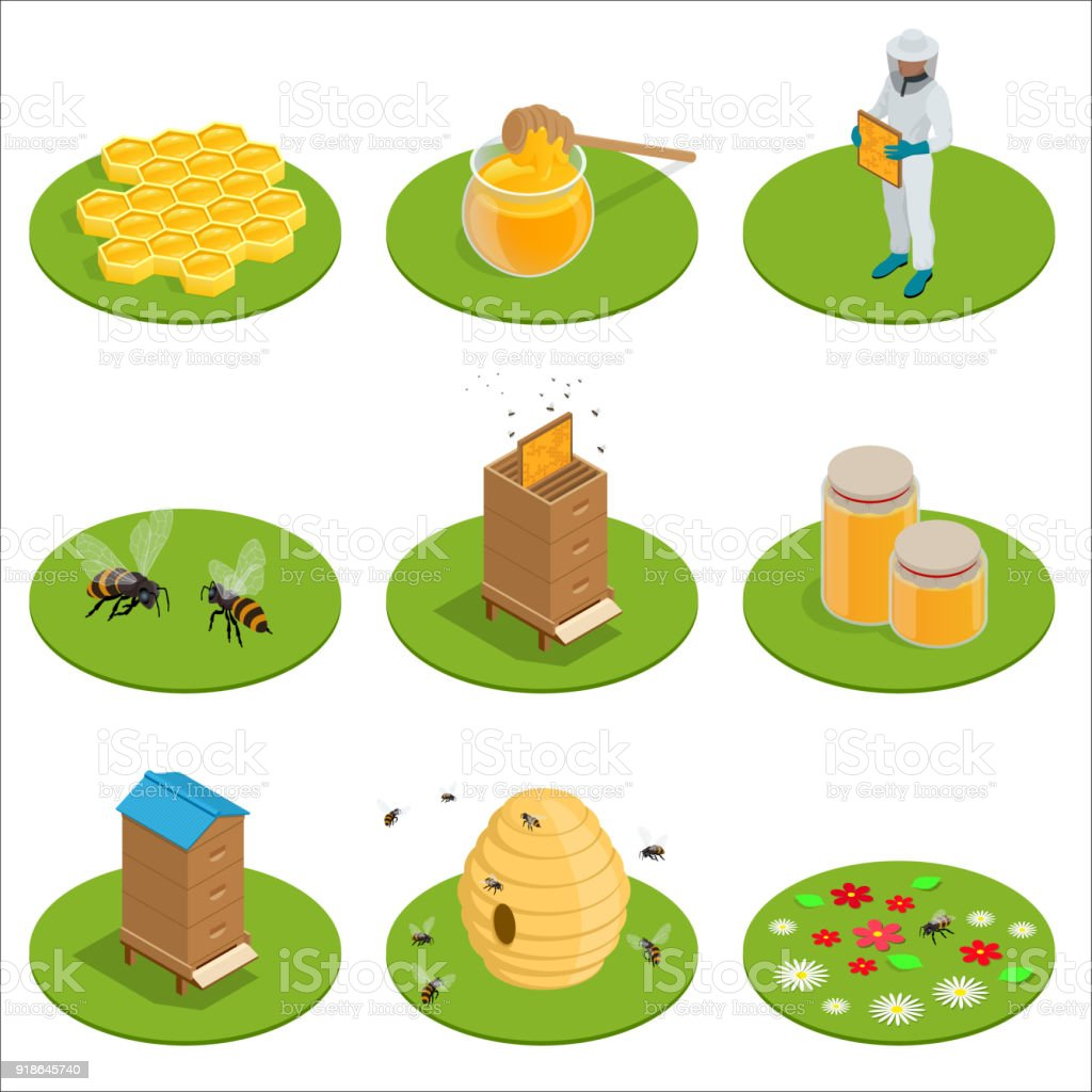 Isometric Honey isolated icons set with bees, beekeeper works on an apiary, hive, bee, honeycomb. Vector illustration vector art illustration