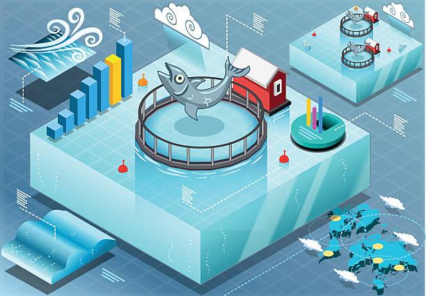 ilustrações de stock, clip art, desenhos animados e ícones de minibarra de ferramentas infográfico do mar e peixe de viveiro - aquacultura
