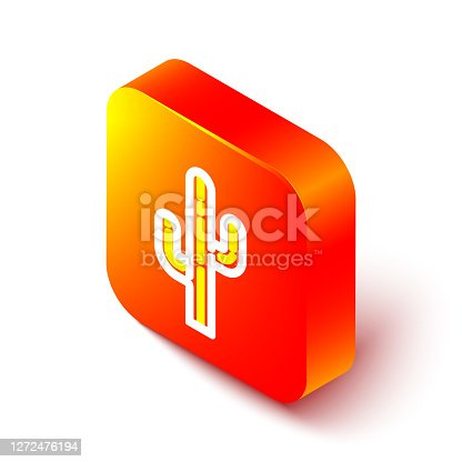 Isometric line Cactus icon isolated on white background. Orange square button. Vector.