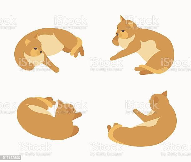 Isometric red lying cat vector id517152800?b=1&k=6&m=517152800&s=612x612&h=j rvtvox 5vswfyt4t1os3prx ou9m2jjgehxfunzne=