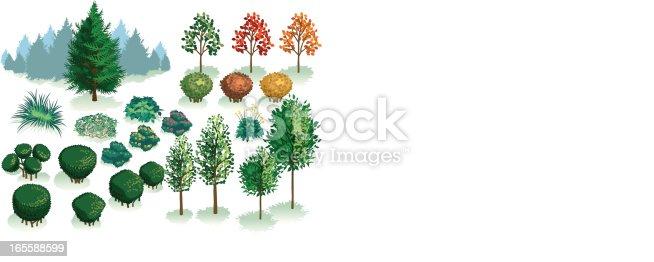 istock Isometric Set, Foliage of Plants, Trees and Bushes 165588599