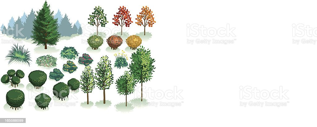 Isometric Set, Foliage of Plants, Trees and Bushes vector art illustration