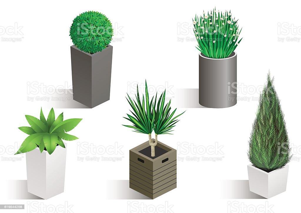 Isometric set of different plants - illustrazione arte vettoriale