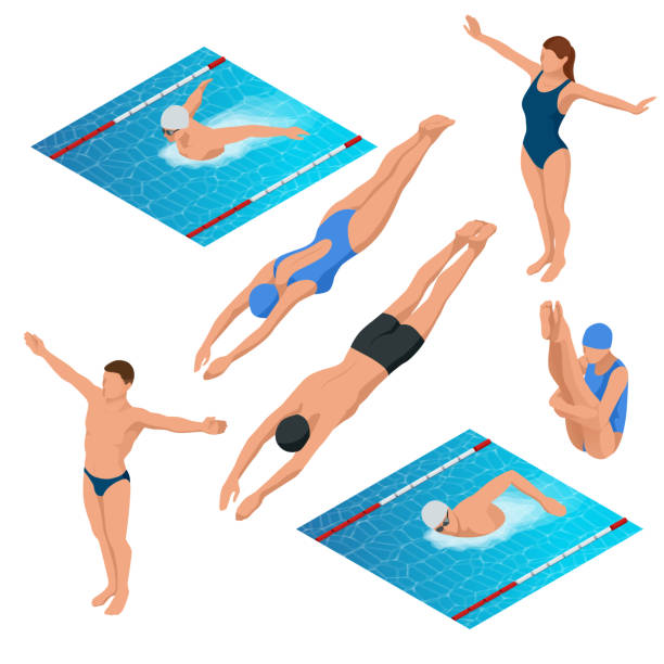 Isometric swimming pool, swimmers human characters vector illustration. vector art illustration