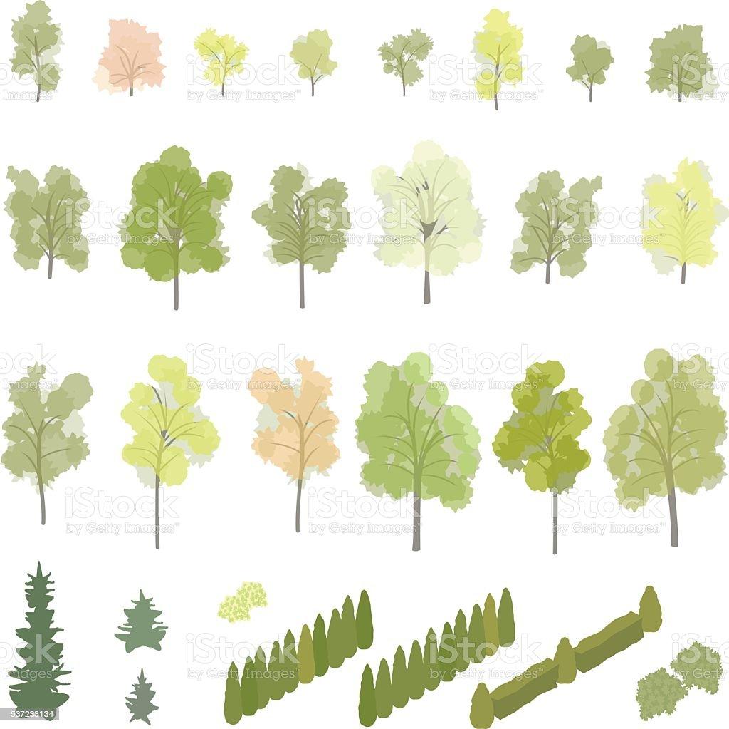 Isometrici alberi e arbusti - illustrazione arte vettoriale