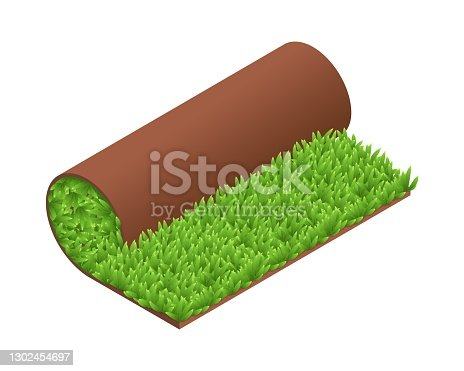 istock Isometric vector illustration green grass turf roll isolated on white background. Realistic carpet lawn grass icon in flat cartoon style. Artificial rolled green grass. Lawn roll with brown soil. 1302454697