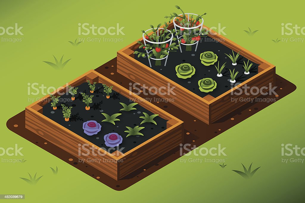 Isometric Vegetable Garden - Royalty-free Box - Container stock vector
