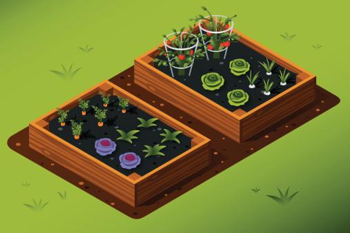 Garden stock illustrations