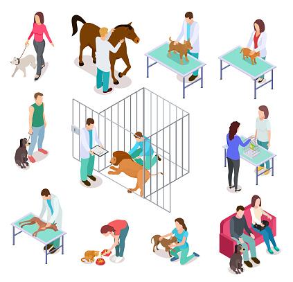 Isometric veterinary. Animals shelter people pet dog cat veterinarian volunteer veterinarians medicine clinic vector isolated set