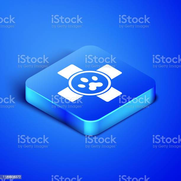 Isometric veterinary clinic symbol icon isolated on blue background vector id1189938372?b=1&k=6&m=1189938372&s=612x612&h=i6poe98qz5xw5qtyad4yeudgqwywn55dvyk61hu3vu8=