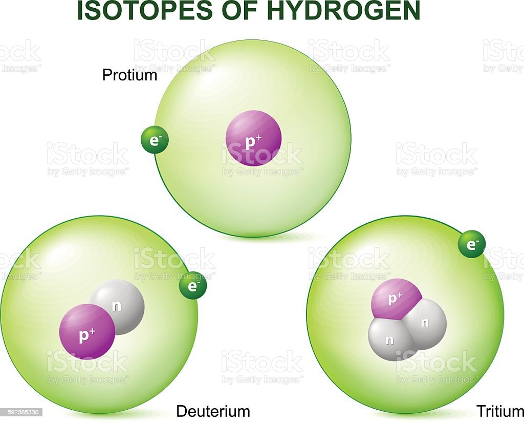Isotopes of hydrogen vector art illustration