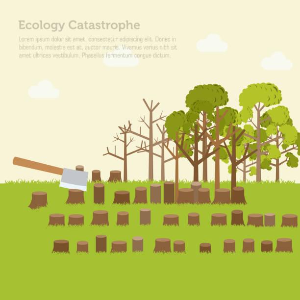 проблемы обезлесивания иллюстрация дизайн фон - ущерб окружающей среде stock illustrations