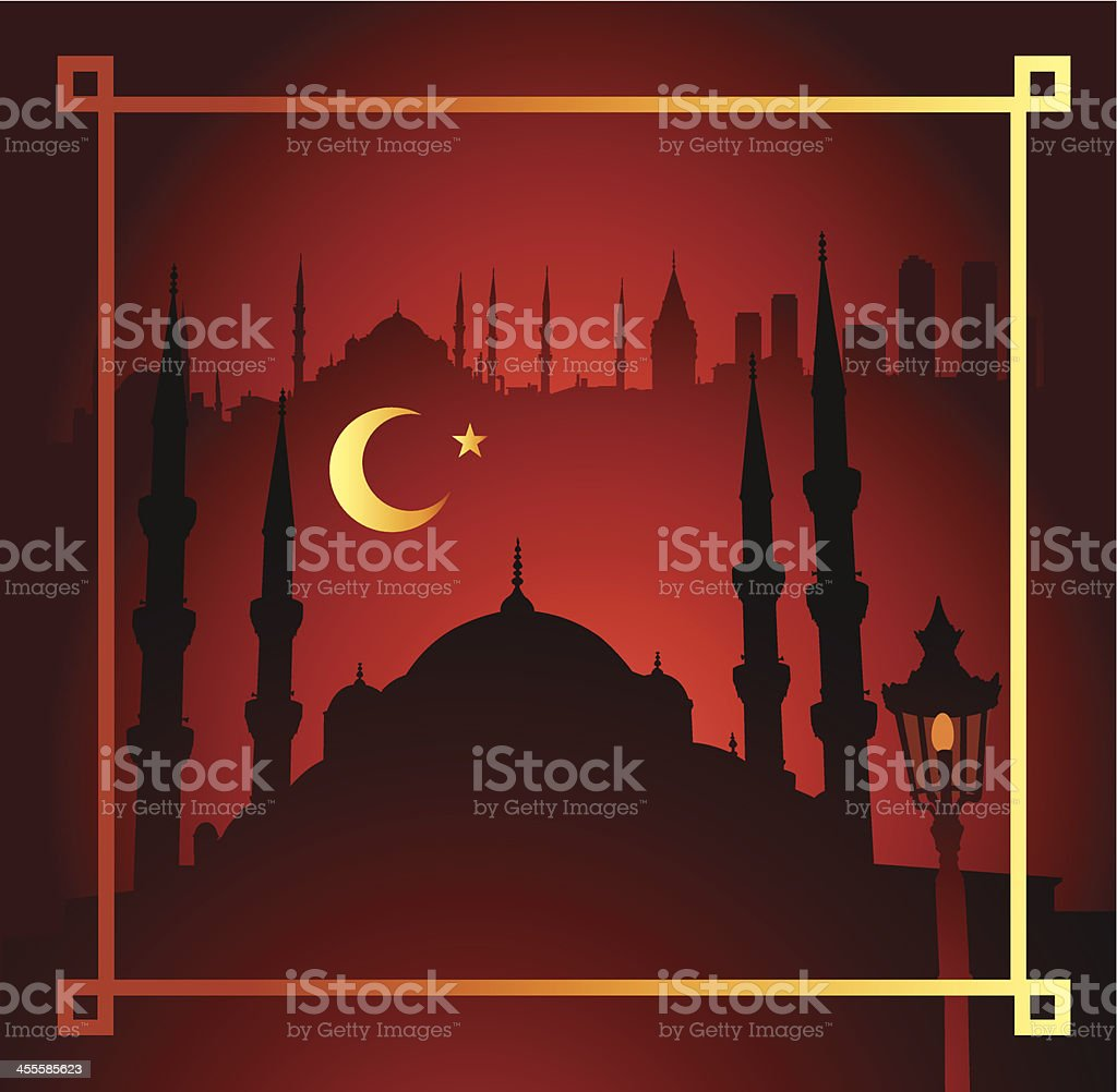 Istanbul at night vector art illustration