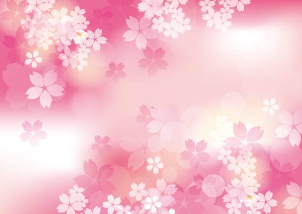 It is a beautiful sakur in Japan vector art illustration