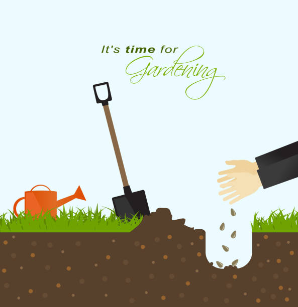 It is time for gardening.Person putting seeds in the ground with spade and watering can in field vector art illustration