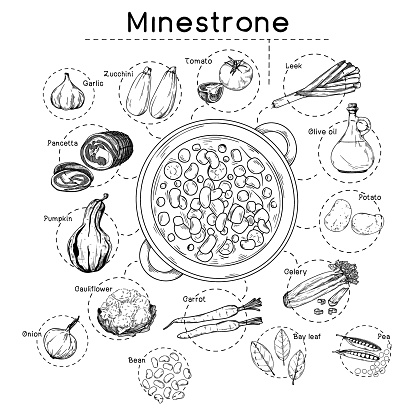 Italian cuisine soup recipe. Minestrone. Plate with soup and different ingredients isolated on a white background. Vector illustration