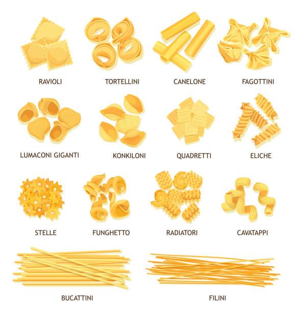 Italian pasta, spaghetti, fusilli and macaroni Pasta, macaroni and spaghetti of Italian food vector design. Fusilli, tortellini and ravioli, cannelloni, noodle and stelline, conchiglie, dumplings and bucatini, lasagna, filini and funghetto shapes conchiglie stock illustrations