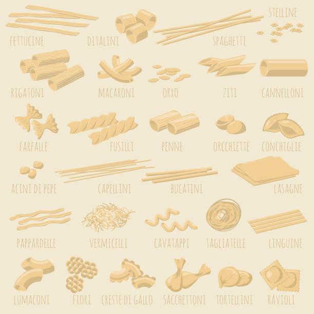 Italian pasta types. Italian pasta types. Vector design element set. cannelloni stock illustrations
