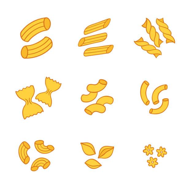 Italian pasta types Italian pasta types set, different shapes of macaroni. Hand drawn isolated vector illustration. conchiglie stock illustrations