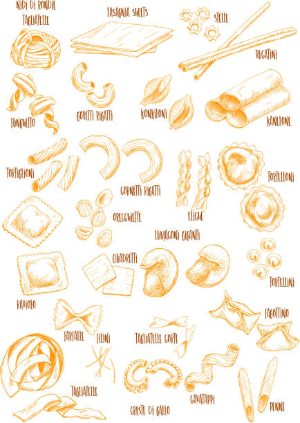 Italian pasta vector sketch names icons set Pasta names sketch icons. Vector isolated italian macaroni sorts of nidi di rondie or tagliatelle, funghetto and gobeti rigati, lasagnia or konkiloni and kanelone, durum pasta bucatini and spaghetti canelones stock illustrations