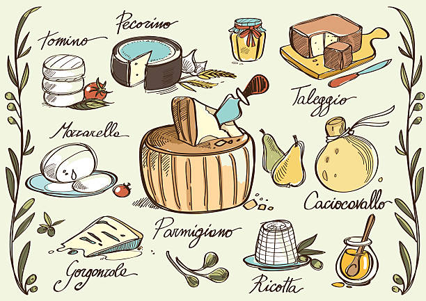 Italian traditional cheese Tasty traditional italian cheese sketched in Illustrator: mozzarella, caciocavallo, ricotta, parmigiano, taleggio, tomino, pecorino, gorgonzola and capers, pears, honey, jam and olives. mozzarella stock illustrations