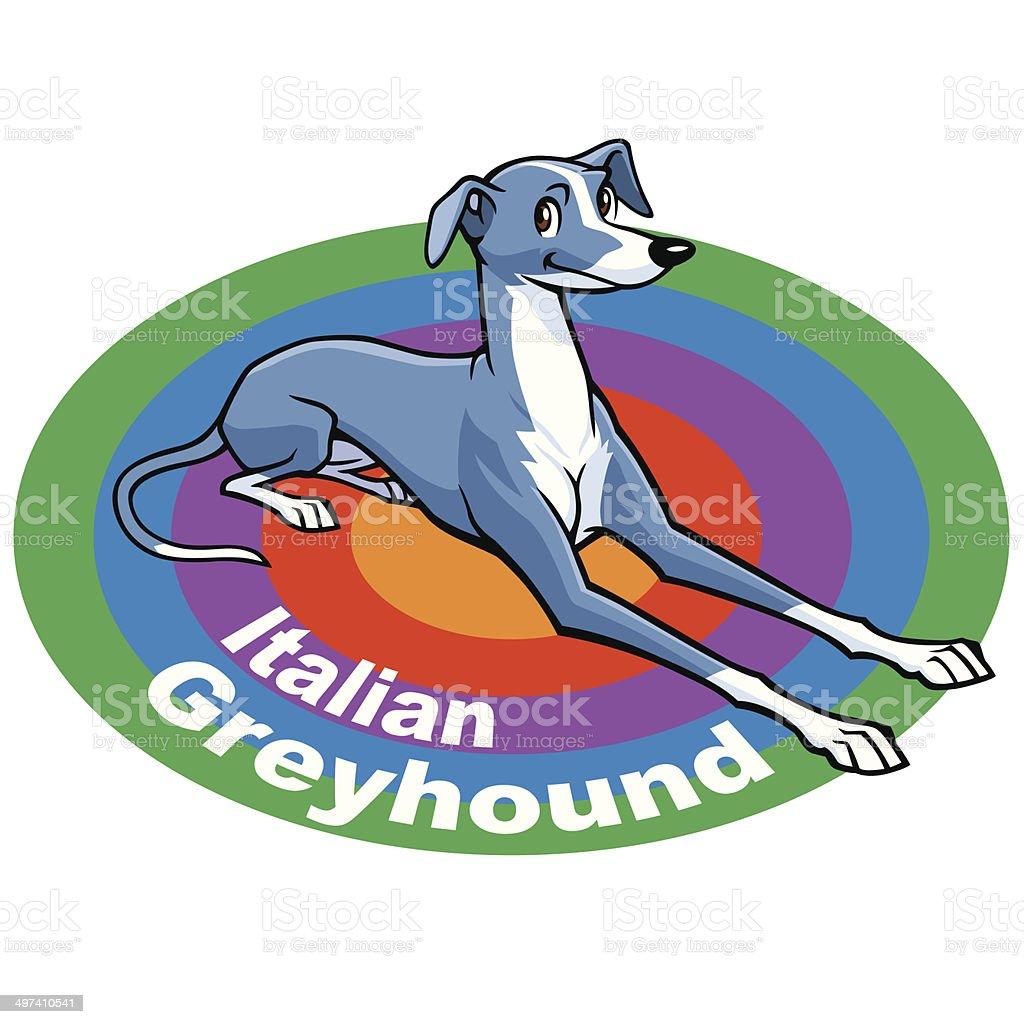 ItalianGreyhound vector art illustration