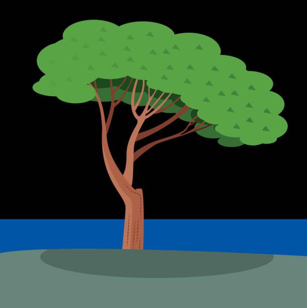illustrazioni stock, clip art, cartoni animati e icone di tendenza di italy pine - amalfi