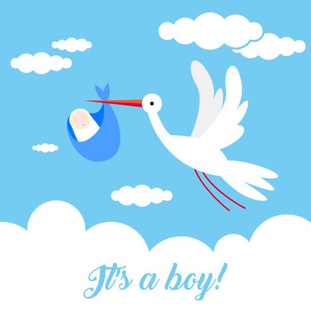 ilustrações, clipart, desenhos animados e ícones de é um menino! cegonha ave animal personagem voar através do céu, segurando um bebê recém-nascido. clássico mito de pássaro cegonha entregar um bebê recém-nascido - novo bebê
