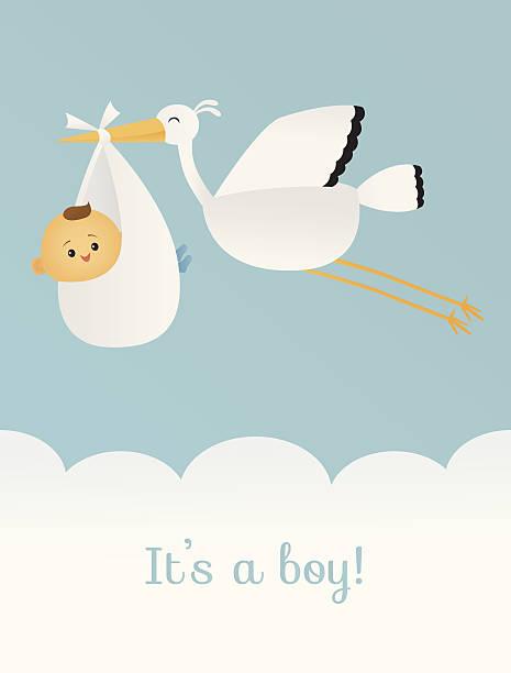 stockillustraties, clipart, cartoons en iconen met it's a boy - alleen één jongensbaby