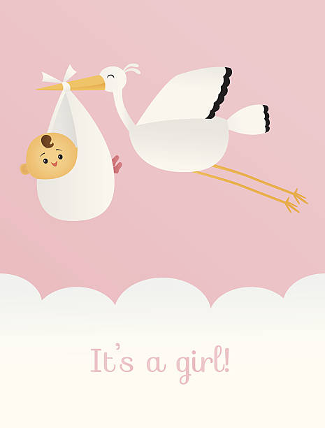It's a Girl A vector illustration of a stork carrying a bundle of joy. Stork and baby are grouped together. Text is on a separate layer, making it easy to remove. Linear and radial gradients used. No meshes. it's a girl stock illustrations