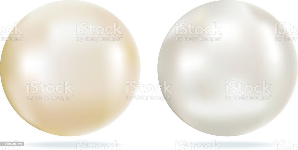 Ivory and White Pearls with Shining Looking Highlights vector art illustration