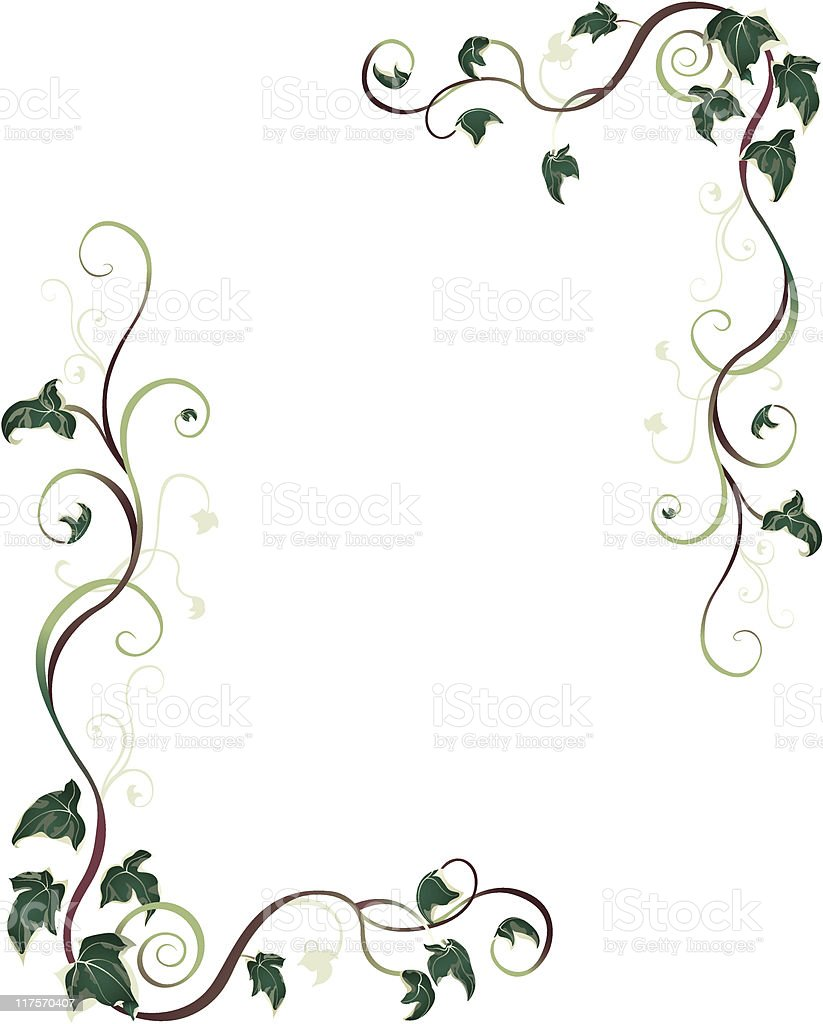Ivy Border vector art illustration