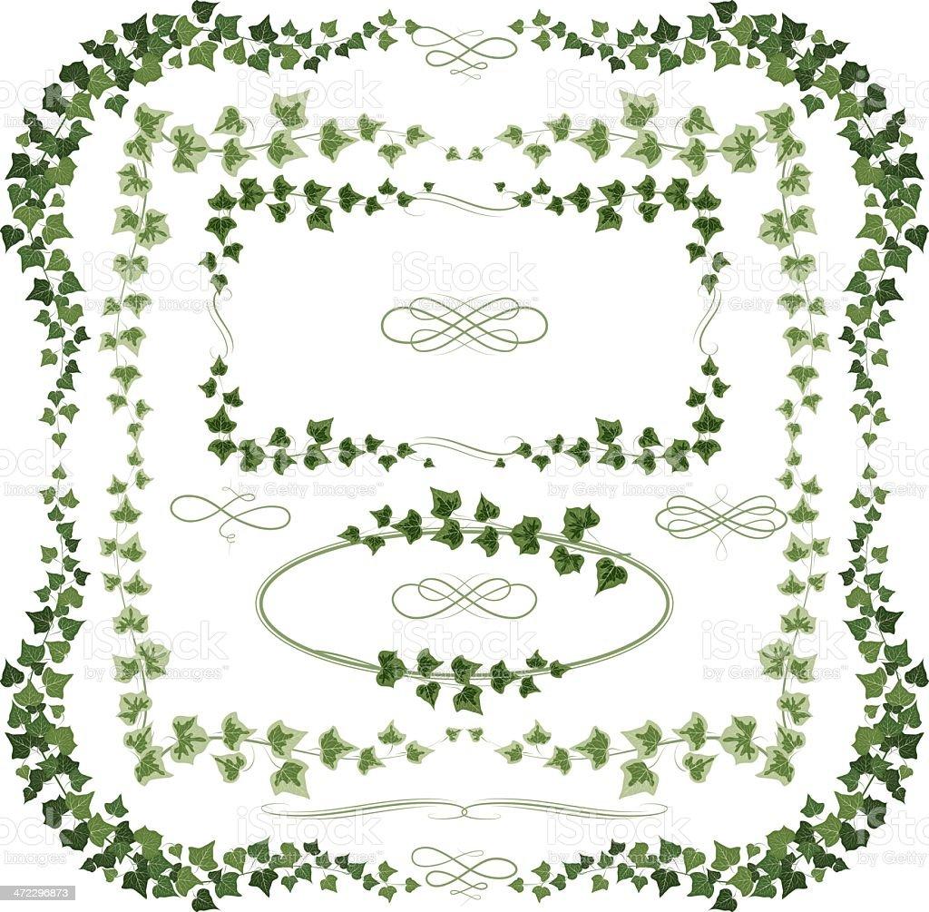 Ivy frames vector art illustration