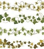 ivy ornament seamless pattern