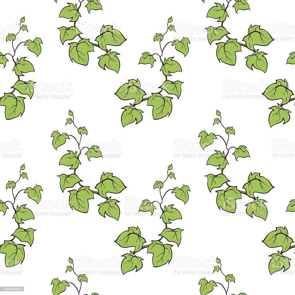 Ivy Vector Hand Drawn Seamless Pattern Climbing Woody ...