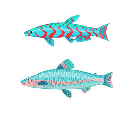 Jack Dempsey Fish Fauna Set Vector Illustration