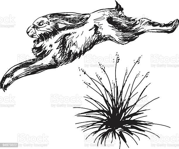 Jack rabbit jumping over clump of grass ink sketch vector id94973322?b=1&k=6&m=94973322&s=612x612&h=2 watbyhj3m76fn8etxvx96slde0gxylewp 2ux48gu=