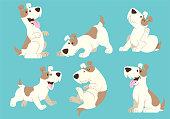 jack russel terrier dog cartoon set