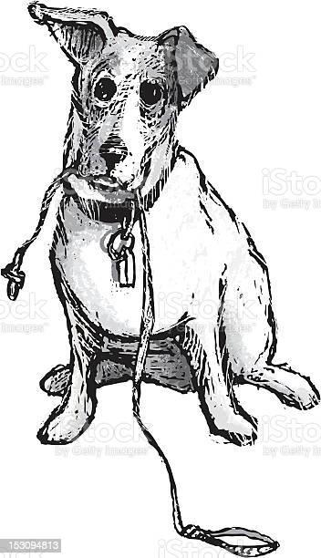 Jack russell terrier dog holding a leash vector id153094813?b=1&k=6&m=153094813&s=612x612&h=grf mt4vrvwvhrgdcgho6sk2v3syhskuiuz vjzgpf8=