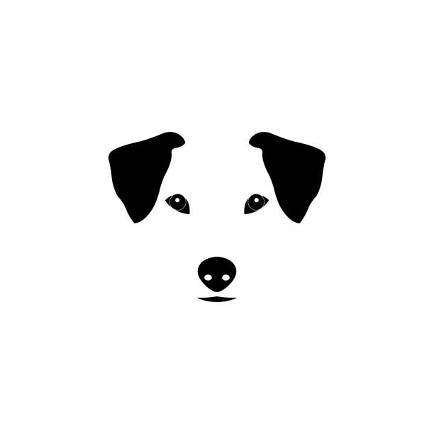 jack russell terrier dog vector illustration. purebred dog illustration. sketch of jack russell terrier. - hundebetten stock-grafiken, -clipart, -cartoons und -symbole