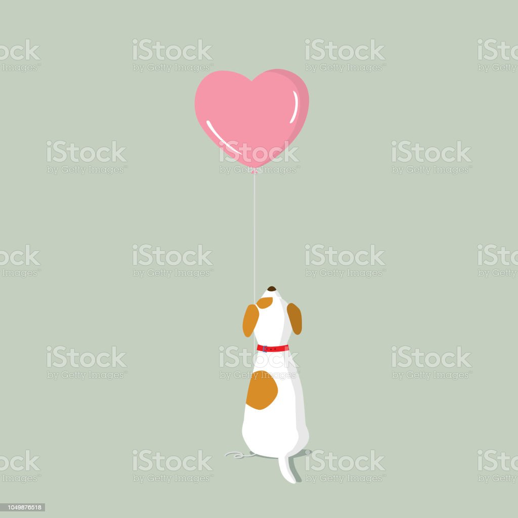Jack Russell Terrier puppy with pink heart shape helium balloon vector art illustration