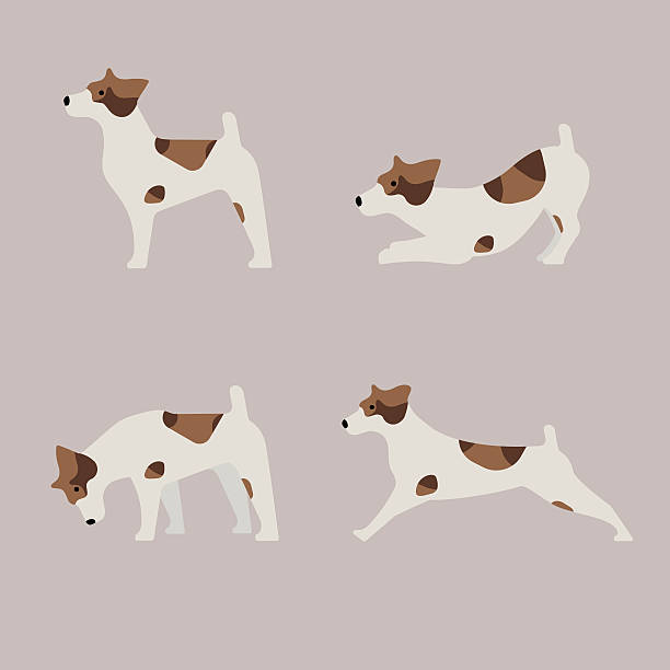Best Dog Eating Illustrations, Royalty-Free Vector Graphics