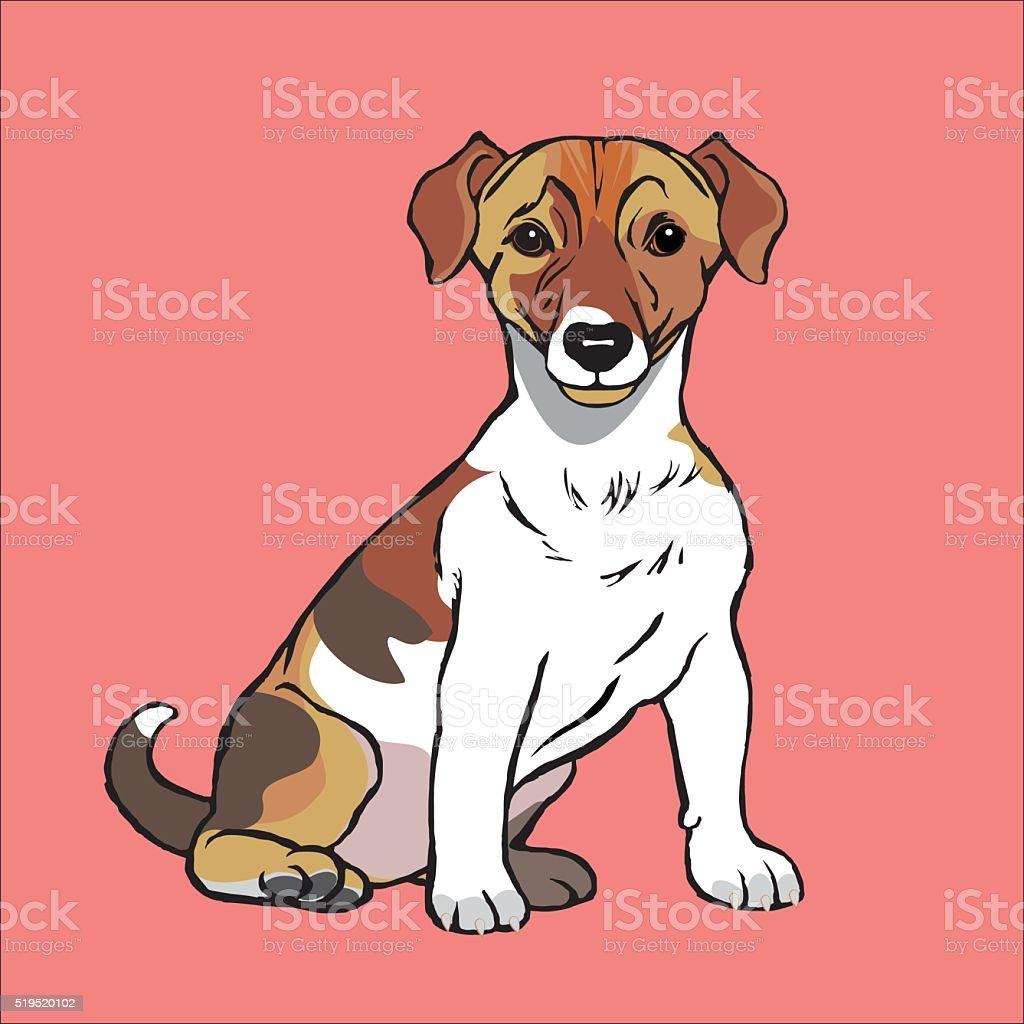 jack Russell Terrier vector art illustration