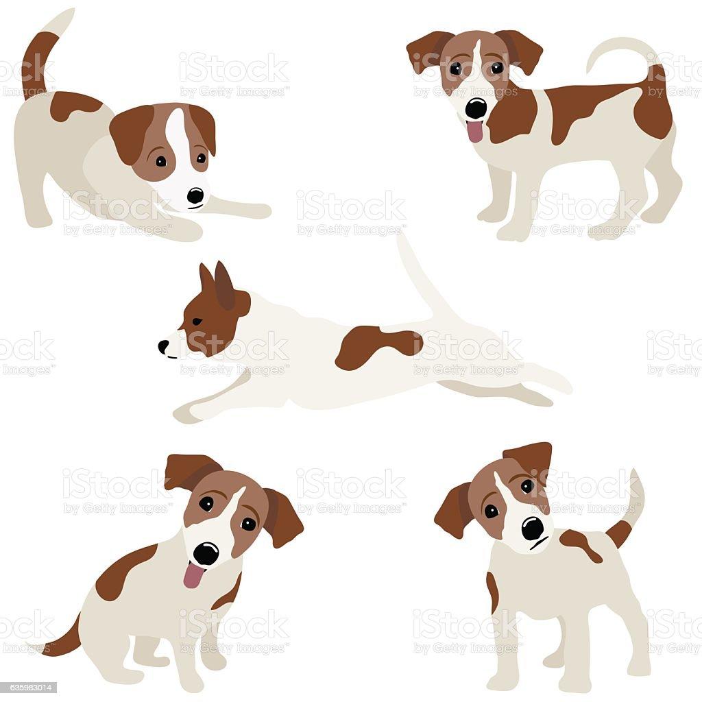 Jack Russell Terrier. Vector Illustration of a dog vector art illustration