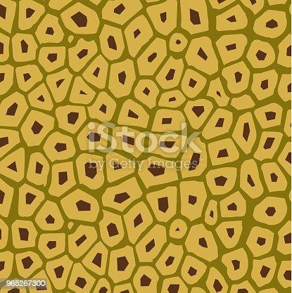 Jackfruit Texture Vector - Stockowe grafiki wektorowe i więcej obrazów Abstrakcja 965267300