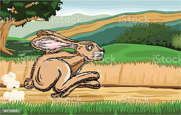 Jackrabbit running along a country road with country scene background vector id164155932?b=1&k=6&m=164155932&s=612x612&h=adzq7axjn q24rg3y cijjqzgihlfe0pul8oqoxbmae=