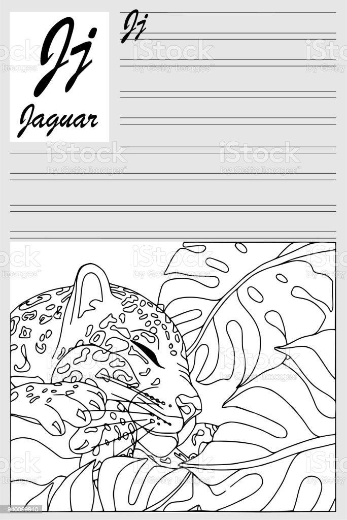 Ilustración de Jaguar Alfabeto Inglés Contorno Para Colorear ...