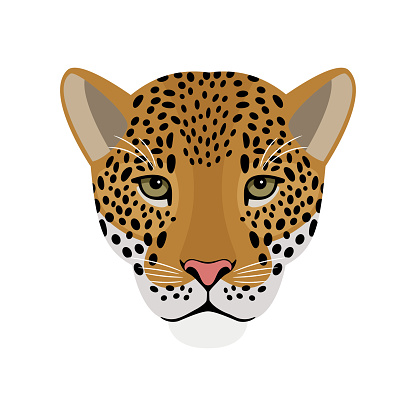 Jaguar head. Cartoon portrait of redhead beast of wildlife, symbol of hunting